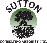 Sutton Consulting Arborist, Inc.